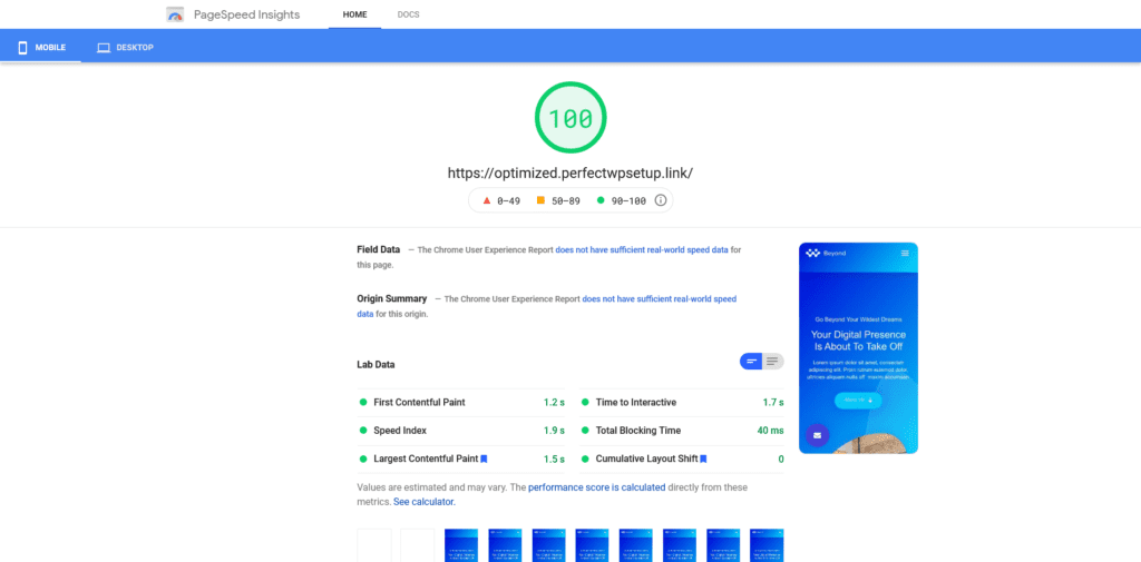 results page of Google's PageSpeed Insights